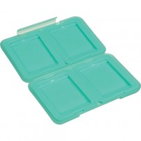 Ruggard Memory Card Case for 4 Compact Flash Cards (Light Green)